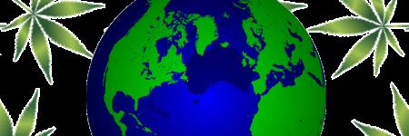 10 המדינות שמגדלות את הקנאביס הכי טוב