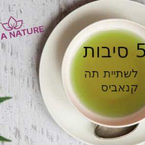 5 סיבות לשתות תה קנאביס