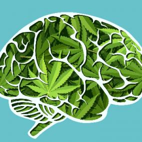 CBD עשוי לעזור בטיפול בפסיכוזה